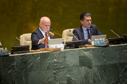 General Assembly Thirty-Fourth Plenary