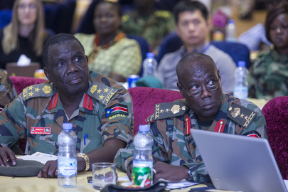 Workshop on Cantonment of Forces in South Sudan Peace Process
