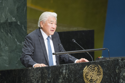 General Assembly Considers Cooperation between UN and Regional Organizations