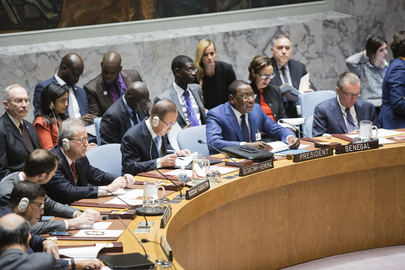 Security Council Debates Water, Peace and Security
