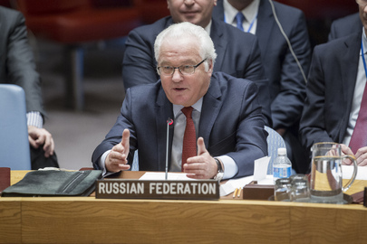 Security Council Adopts Resolution on Syria