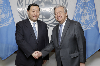 Secretary-General Meets Head of China Electricity Council