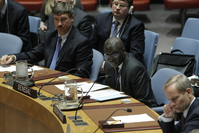 Security Council Adopts Resolution on New President of Gambia