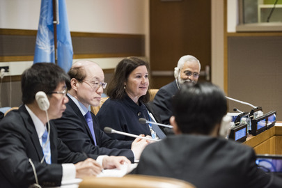 First Steering Committee Meeting of UN Peace and Development Trust Fund