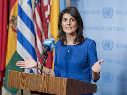 United States Representative Briefs Press on Middle East