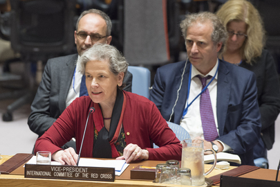 7951st Security Council Meeting: Protection of Civilians in Armed Conflict - Part 2