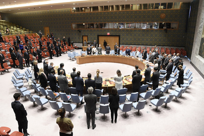 Security Council Honours Victims of Tehran Terror Attacks