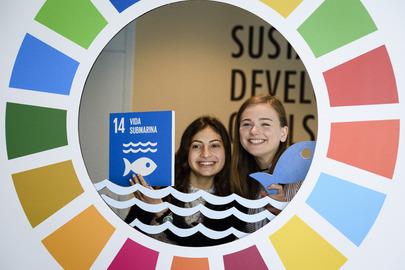 SDG Display