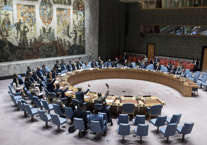 Security Council Extends Mandate of Iraq Mission