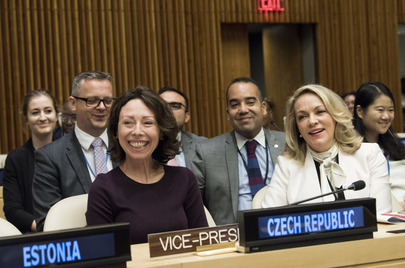ECOSOC Elects President for 2018 Session