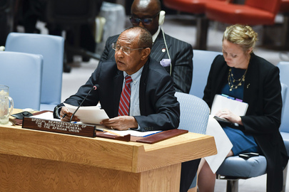Security Council Considers Cooperation between UN and African Union