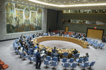 Security Council Considers Situation in Lake Chad Basin