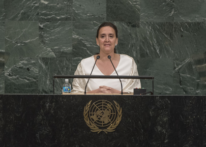 Vice President of Argentina Addresses General Assembly
