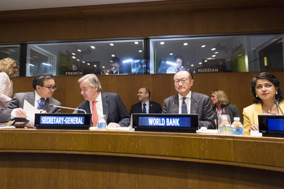 High-level Panel on Water