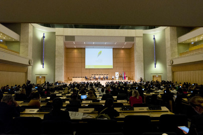 Conference of Parties to Minamata Convention on Mercury