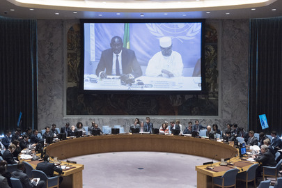 Security Council Considers Situation in Mali