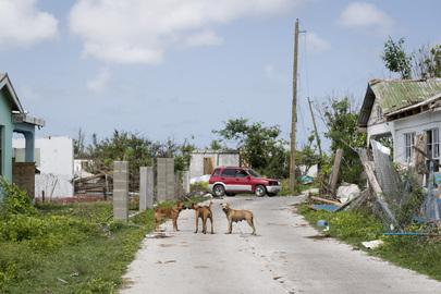 Scene from Codrington Town in Barbuda During Secretary-General's Visit