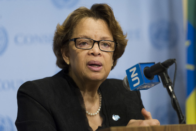 Head of UN Mission in Haiti Speaks to Press