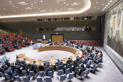 Security Council Meets on International Peace and Security