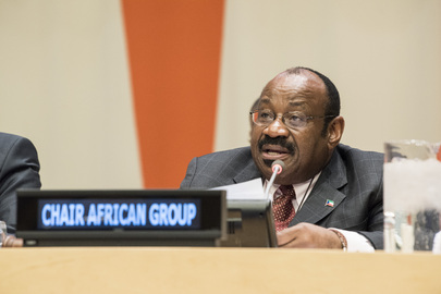 High-level Event on the Impacts of Climate Change and Migration on Peace and Security in Africa