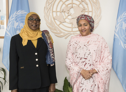 Deputy Secretary-General Meets State Minister of Nigeria