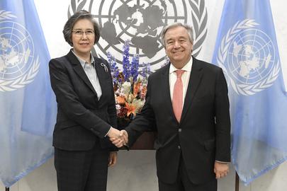 Secretary-General Meets Coordination Committee of Special Procedures of