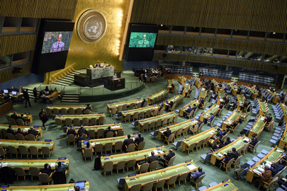 General Assembly Debates Reform of Security Council