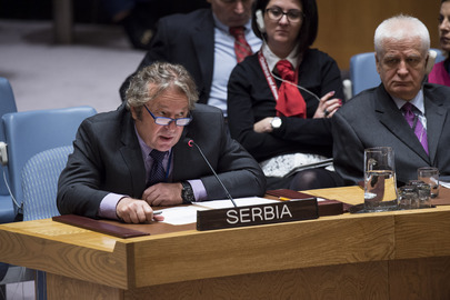 Security Council Considers Situation in Bosnia and Herzegovina
