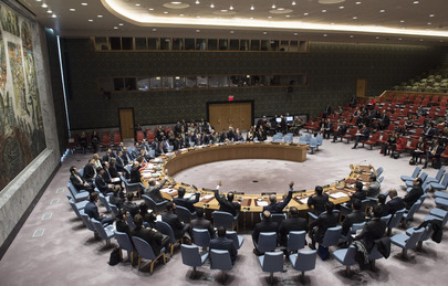 Security Council Adopts Resolution on Humanitarian Cross-border Aid to Syria