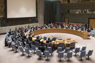 Security Council Extends Operations of CTED
