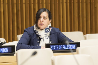 Opening Session of Committee on Rights of Palestinian People