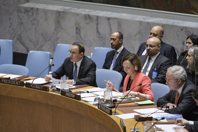 Security Council Considers Own Working Methods