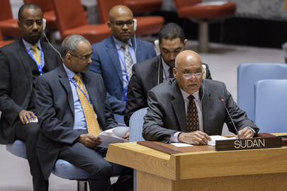 Security Council Considers the Situation in Sudan and South Sudan