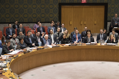 Security Council Votes on Resolution on Yemen
