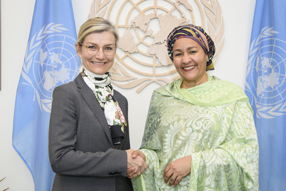 Deputy Secretary-General Meets Minister for Development of Denmark