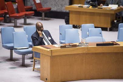 Security Council Considers Situation in Mali, Sanctions