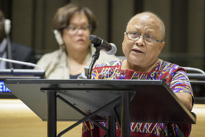 Permanent Forum on Indigenous Issues: First Informal Interactive Hearing with Indigenous Peoples