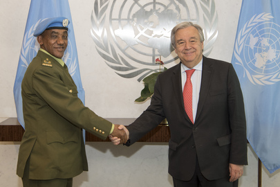 Secretary-General Meets Head of UNISFA