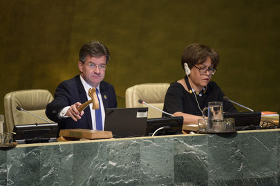 General Assembly Meets on GUAM and Implications for International Peace and Security
