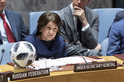 Security Council Considers Non-proliferation