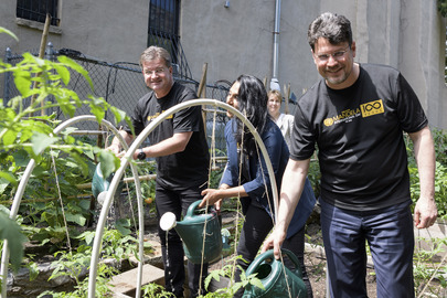 Volunteer Gardening Event in New York City on Mandela Day