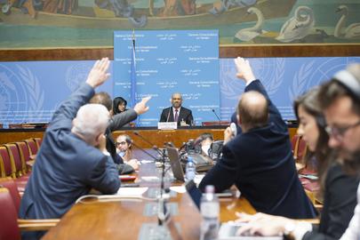 Press Conference on Geneva Consultations on Yemen