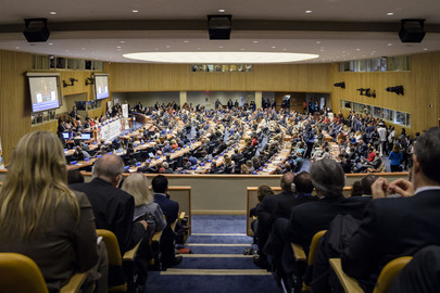 High-level Meeting on Non-communicable Diseases