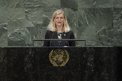 Minister for Development of Denmark Addresses General Assembly
