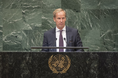 Permanent Representative of Sweden Addresses General Assembly