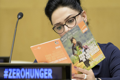 """Briefing on """"State of Food Security and Nutrition in the World and State of Food and Agriculture"""""""