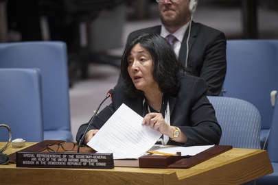 Security Council Considers Situation in Democratic Republic of Congo