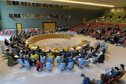 Security Council Considers Situation in Central African Republic