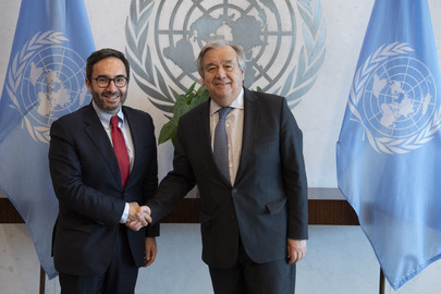 Secretary-General Meets Director of Development Cooperation Directorate