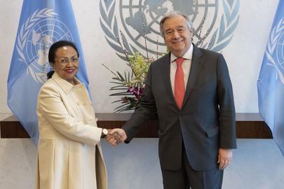 Farewell Call by Permanent Representative of Madagascar